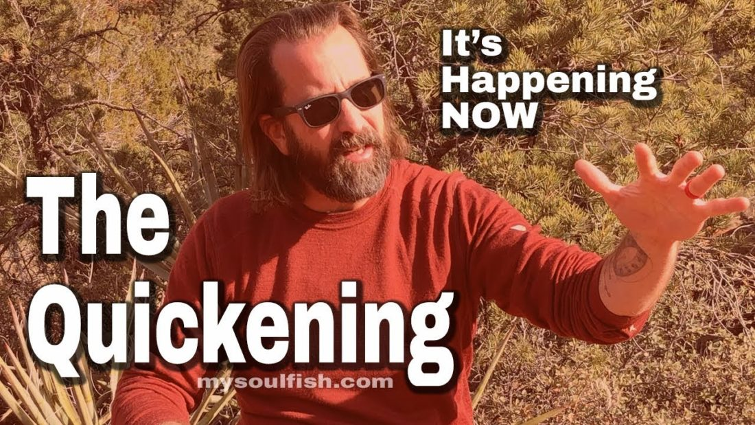 are you experiencing the quickening